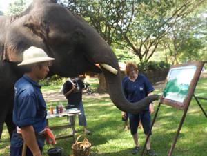 Pangkwan painting with Carol Jacobsen, elephant painting